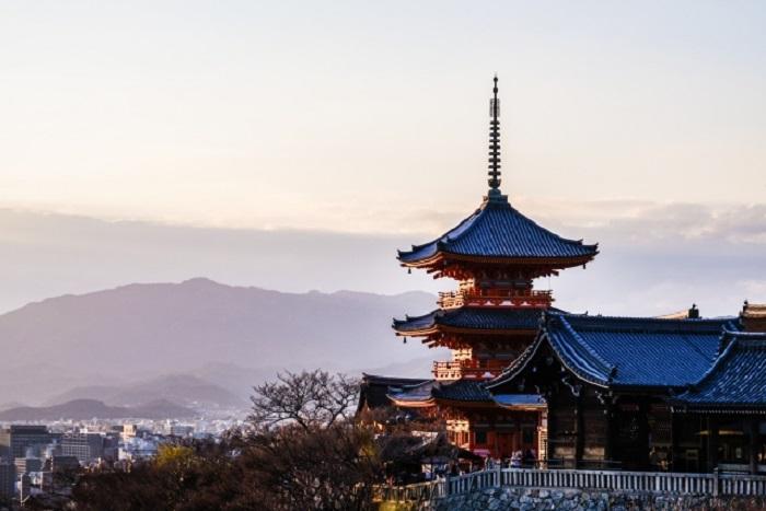 京都の貸し農園